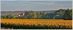 to chateau-sur-champ-de-tournesol