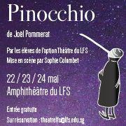 Pinocchio---Vignette-carree-copie-1.jpg