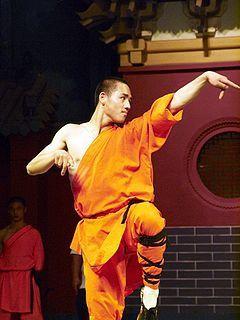 Shaolin_Kung_Fu.jpg