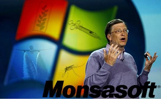 monsasoft_billgates2.jpg