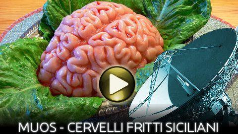 Muos-CervelliFrittiSiciliani-Blog.jpg