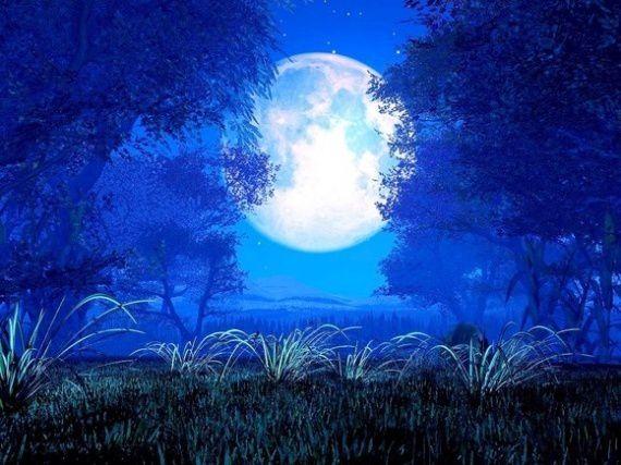promenade-clair-lune-1482312bd0.jpg