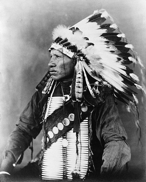 Red-Bird-un-sioux.jpg