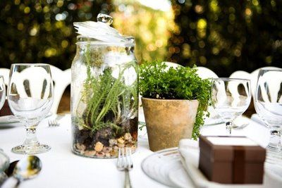 terrarium-wedding-centerpiece-floral-alternative.jpg