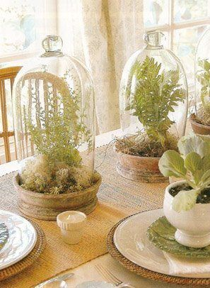 www.bridalweddingdresses.neti-heart-terrariums.html---Copie.jpg