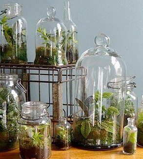 www.bridalweddingdresses.neti-heart-terrariums.html_2.jpg