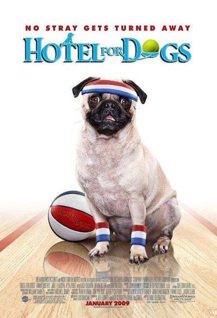 Palace pour chiens - Affiche américaine
