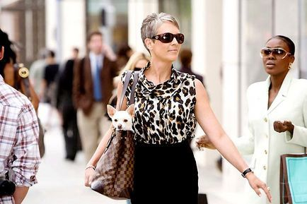 Le Chihuahua de Beverly Hills - Jamie Lee Curtis