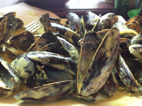 6-moules-frites.jpg