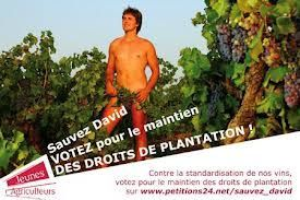 David-droit-de-plantation.jpg