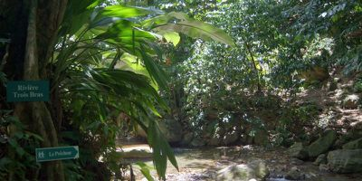 01_grand_riviere_anse_couleuvre