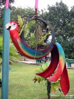Costa Rica 2005 (19)
