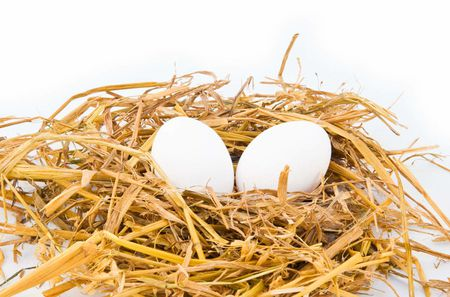 two eggs in a hay nest