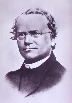 Austrian biologist Gregor Mendel, 'father of genetics' | Source http:/