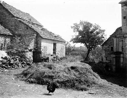 A la ferme, Cornusson, 7 juin 1906