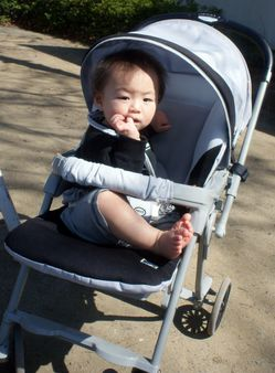 baby in a pushchair034