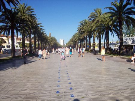 Salou city | Source Transfered from http://nl. wikipedia. org nl. wiki