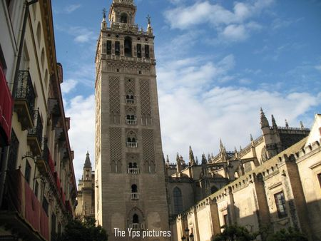1 picture of the Cathedral Maria de la Sede in Sevilla. It is the 3rd