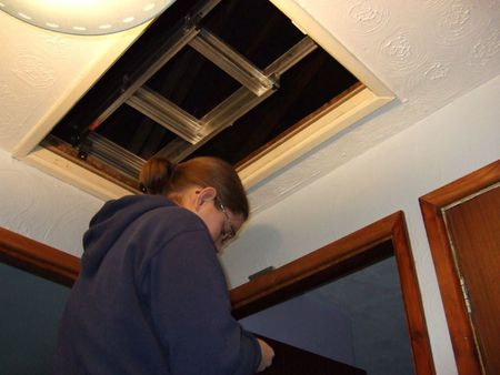 Insulating loft hatch