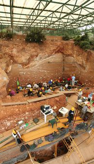 1 Excavations at the site of Gran Dolina, in Atapuerca (Spain), during