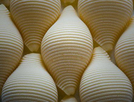 Conchiglioni rigati | Source http://www. flickr. com/photos/29757997@N