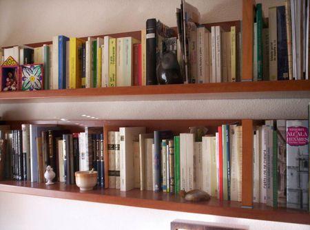 1 Estantería de dos baldas con libros y algunos elementos decorativos