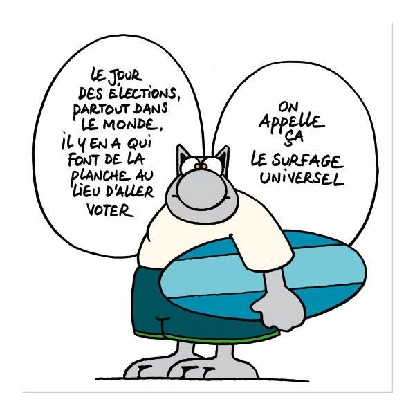 le-chat-geluck-vote-ou-abstention2.jpg
