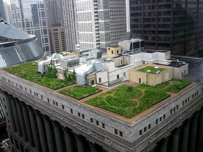 116770-green-roof-design-home-owners-2.jpg