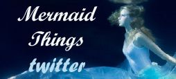 taylor swift mermaid things banner twitter