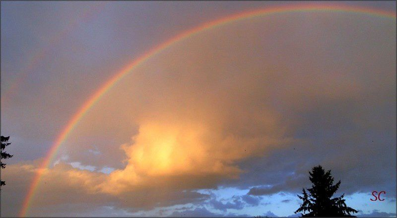 Nuages, arc-en-ciel, lueurs du soir, avions... levez les yeux !