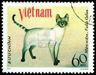 8499493-vietnam--circa-1979--un-timbre-imprime-en-vietnam-m