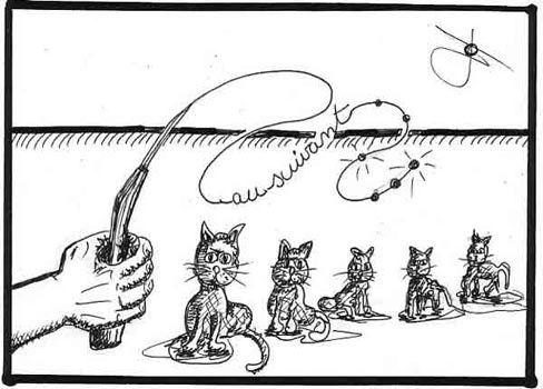 avoir-d-autres-chats-a--fouetter-.jpg