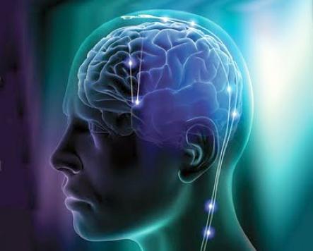 cervello-blog.png