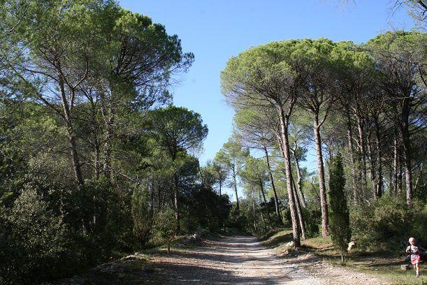 DomaineRestinclières01
