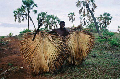 Album-Madagascar Ouest