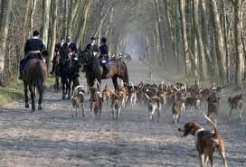 chasse-a-courre.jpg