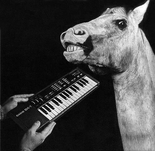 cheval-casio.jpg