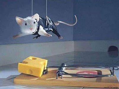 Cheese-Thief.jpg