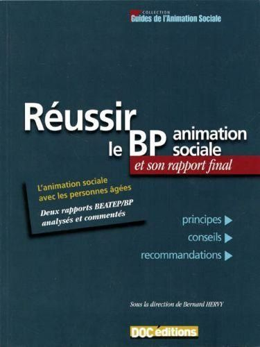 dissertation bpjeps animation sociale
