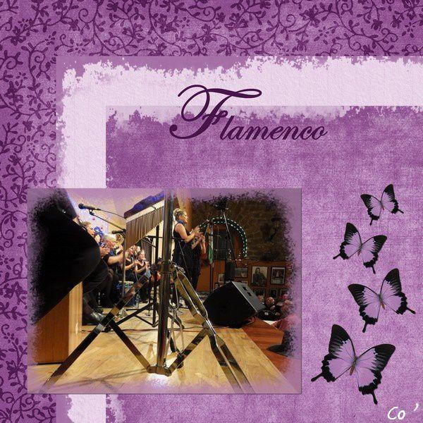 Flamenco-signe.jpg