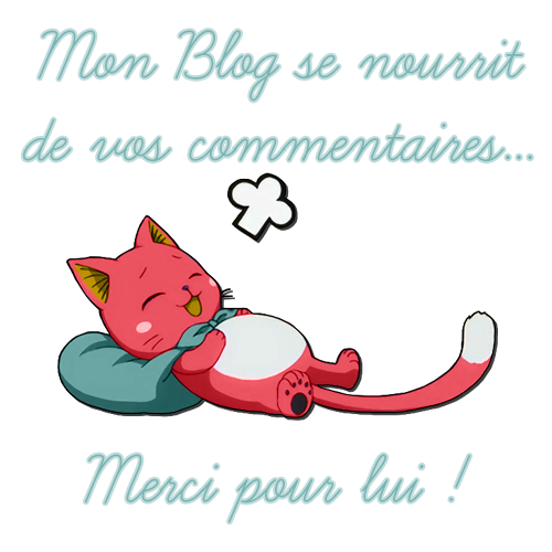 Blog-commentaire-copie copie