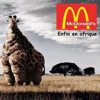 Mc Donald's Mini Chroniques Culinaires by Arno Roch