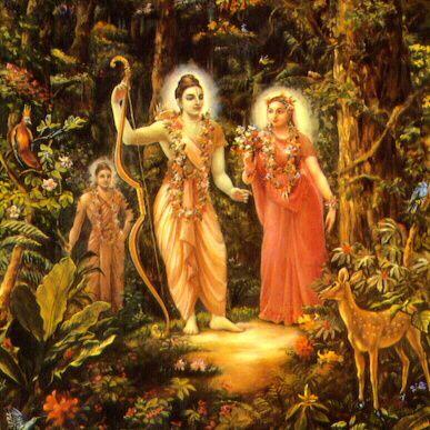 Rama-foresta.jpg