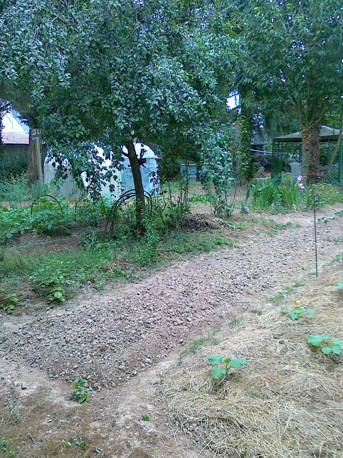 Un jardin à reprendre après quelques années de repos...