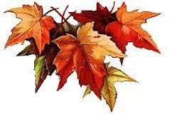 feuilles-d-automne.jpg