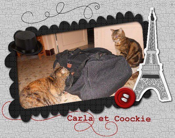 cousins-Carla-et-Coockie.jpg