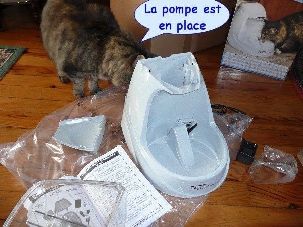 fontaine-pour-chat-04.JPG