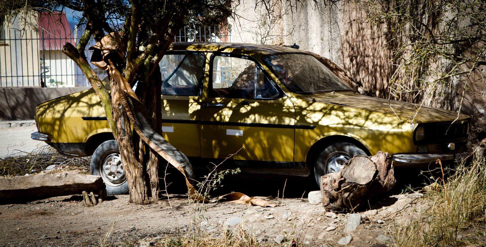 2012: ARGENTINE- Renault-12!