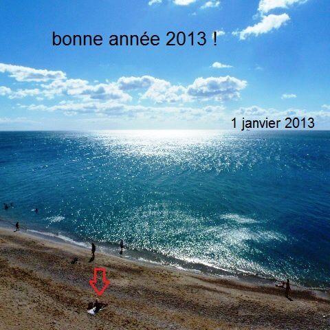 Album Janvier 2013