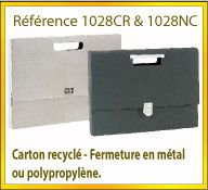 Vign mallette carton recycle ref 1028CR